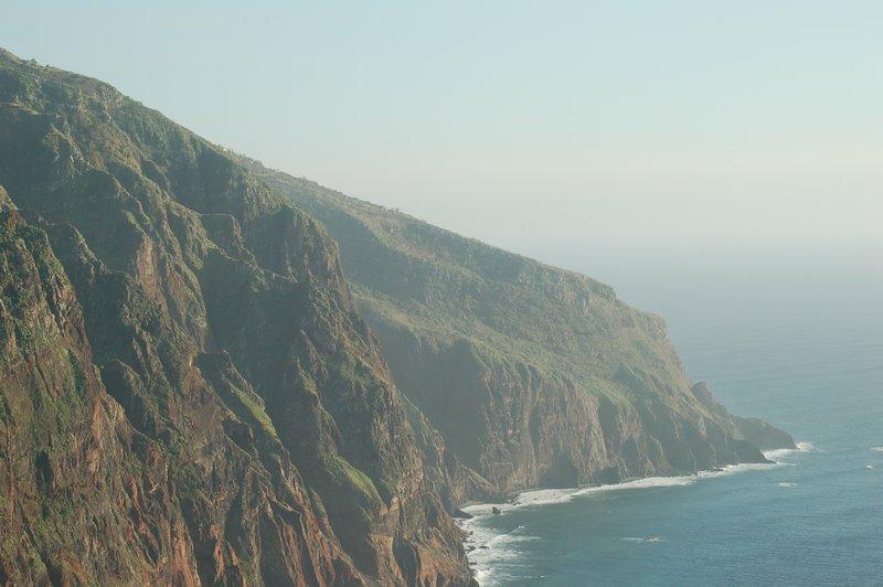Madeira Birdwatching
