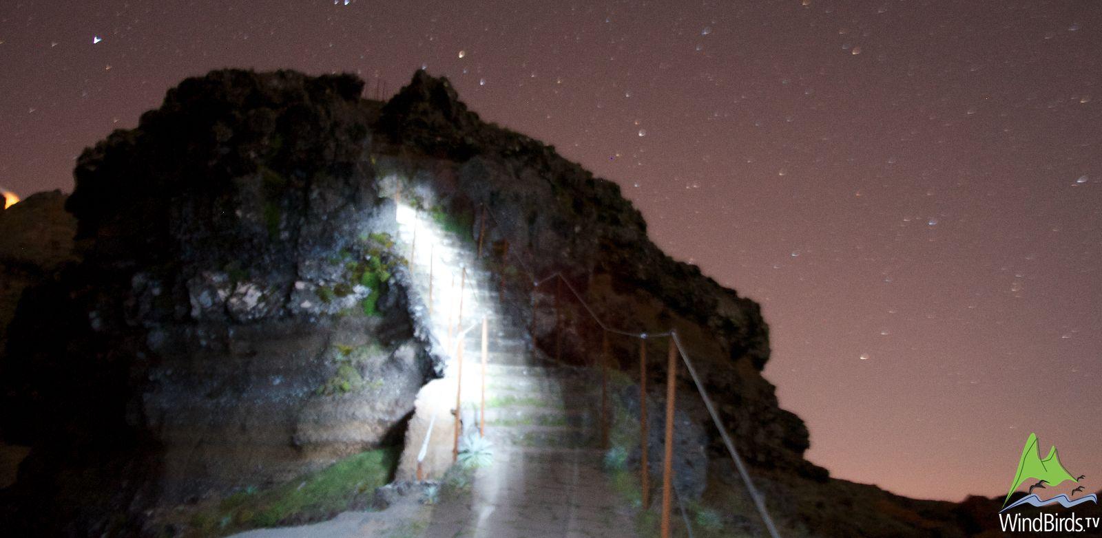 Madeira Birdwatching Night Tour