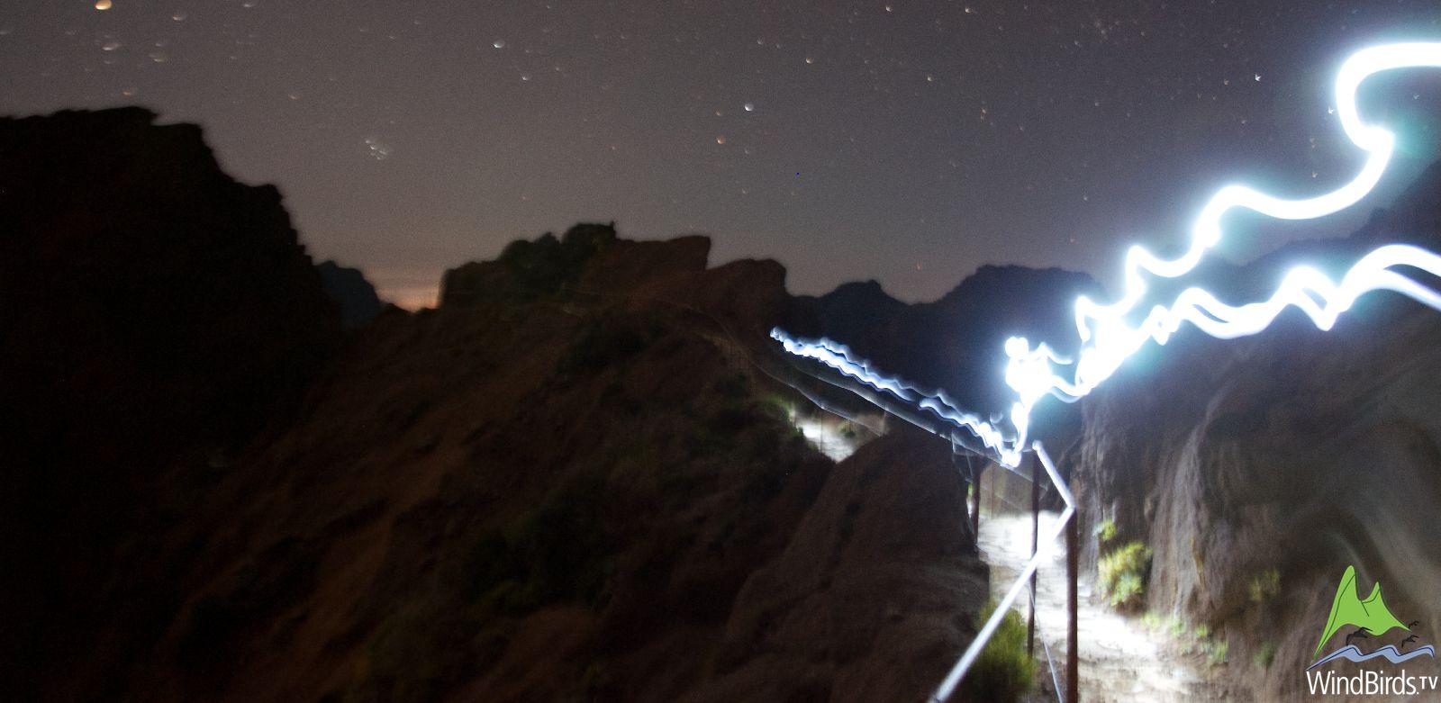 Zino's Petrel at Night